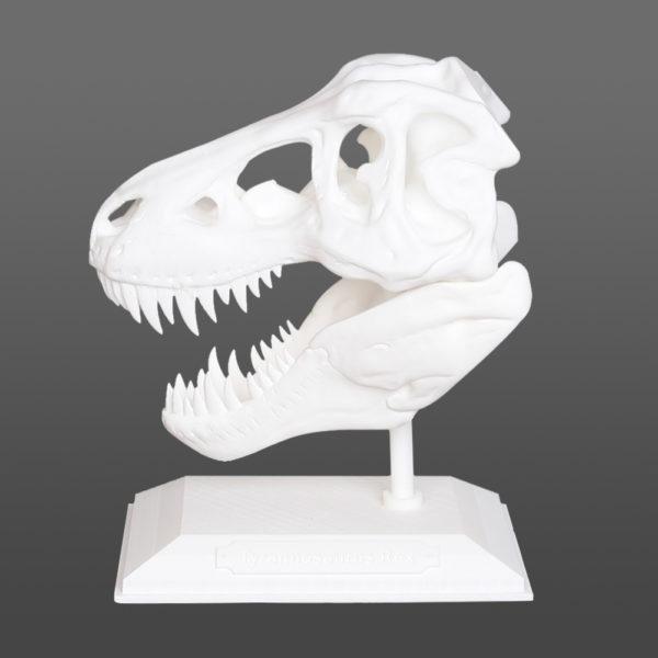 Formbot-Raptor-23226_7